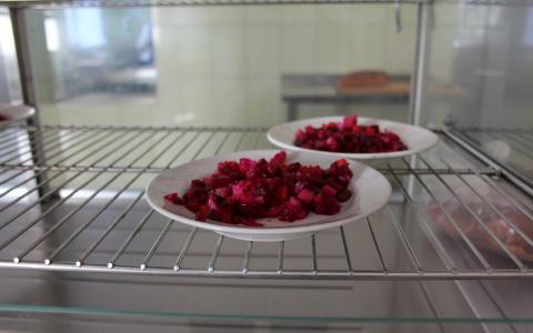 Новости мира: Ученые нашли связь между голоданием и длительностью жизни