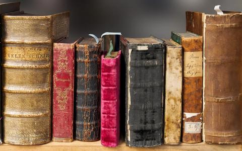 «Неверный – значит враг»: в Пензенской области читали экстремистскую литературу