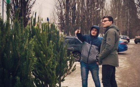 В Пензе с декабря откроются 84 елочных базара по всему городу