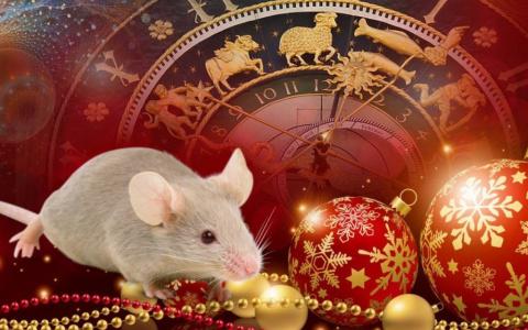 Что для вас приготовила Крыса в 2020? Гороскоп для всех знаков зодиака