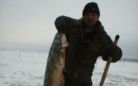 """Подарок тестю"": пензенский рыбак поймал огромного сома - фото"