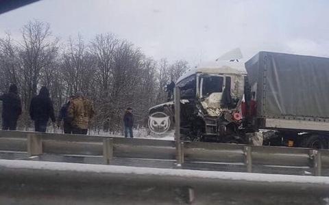 """Кабина превратилась в """"мясо"""": в Пензенской области произошло страшное ДТП"""