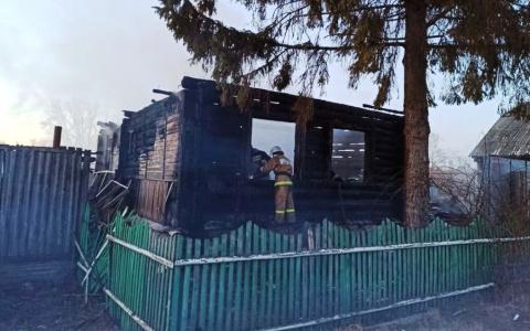 Три девочки погибли в ужасном пожаре в Пензенской области