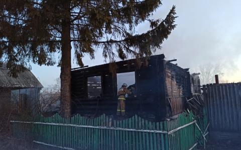 У сгоревших в Пензенской области близняшек остались еще две сестренки