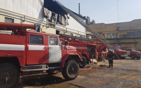 В Пензенской области случился пожар на производстве – подробности