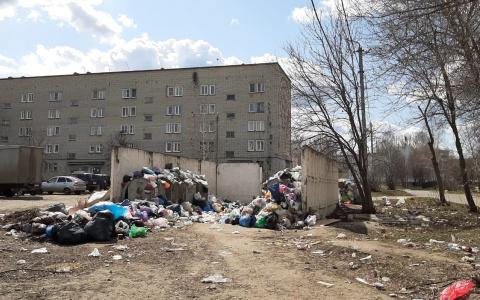 «Мусорный челлендж»: жители Пензенской области утопают в свалках