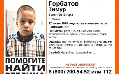 Появились новые подробности о пропавшем 6-летнем мальчике