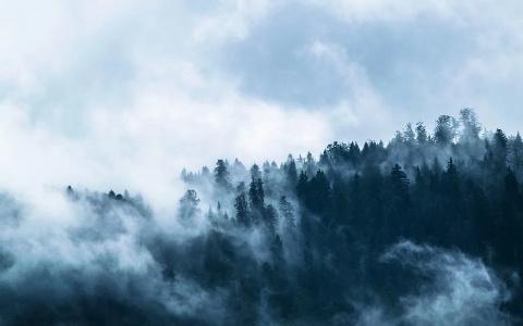 В Пензенской области прогнозируется желтая степень пожарной опасности