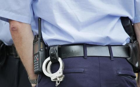 На станции техобслуживания в Пензе задержали грабителя