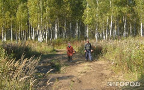 Никаких прогулок! В Пензенской области продлили запрет на посещение некоторых мест