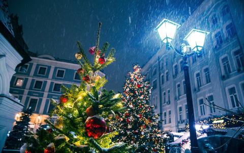 """""""Хороший заработок для водителей"""": стало известно, как жители Пензы зарабатывают в новогодние праздники"""
