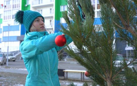 Жителям Спутника установили елки во дворах
