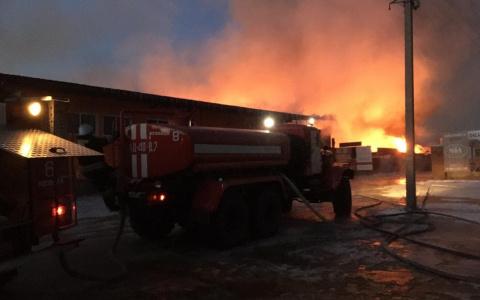 В Пензенской области в пожаре погиб мужчина