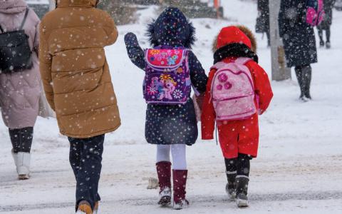 Назвали условия, при которых школьники могут остаться дома