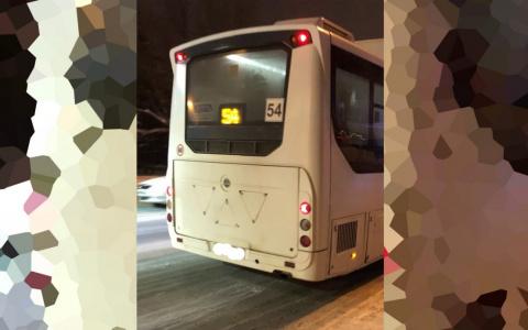 «Выгнали на мороз в –20»: гитариста с собачкой не пустили в пензенский автобус
