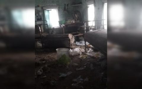 Спала с собаками: пенсионерка выживала без отопления полгода