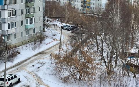 Предупреждение от МЧС: в Пензенской области ожидается сильный ветер