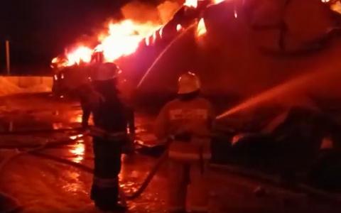 Появились кадры с места пожара в Кривозерье
