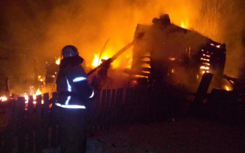 В Пензенской области в пожаре погибли два человека – подробности