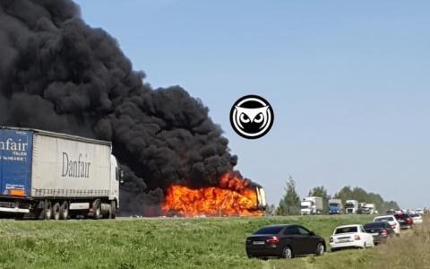 Водитель фуры сгорел заживо в ДТП рядом с Пензенской областью – видео