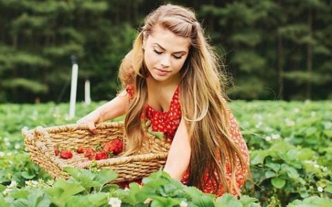 С 25 по 28 мая в Пензе пройдёт выставка растений Новосибирского питомника