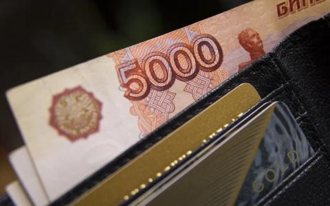 Около 50 млн рублей от государства получат организации Пензы