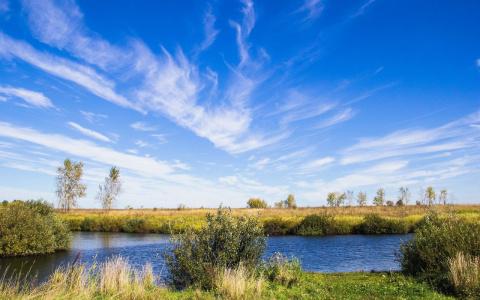 В Пензенской области на пруду погиб мужчина – соцсети