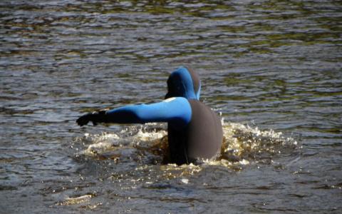 Тело мужчины извлекли из пруда в Пензенской области
