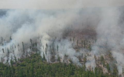 В Пензенской области прогнозируется высокая пожароопасность
