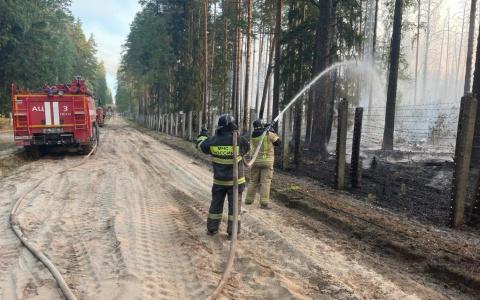 Спасатели из Пензы продолжают борьбу с огнем за Мордовский заповедник