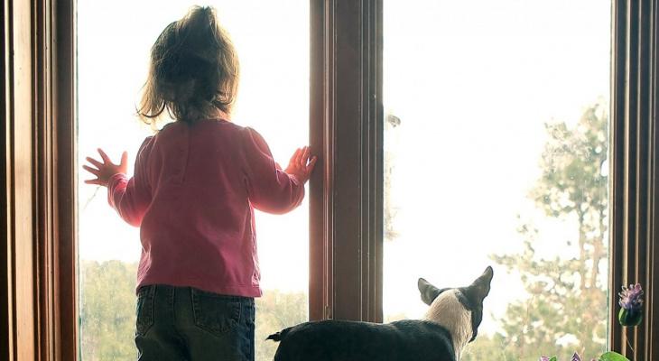 В Пензенской области из окна выпала 5-летняя девочка