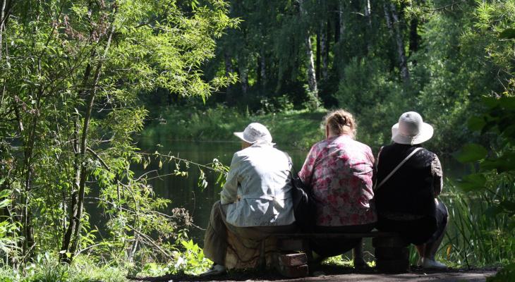Бабушки в опасности: в Пензе орудуют последователи Мавроди