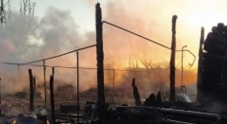 Следственный комитет расследует смерть семерых людей в Пензенской области
