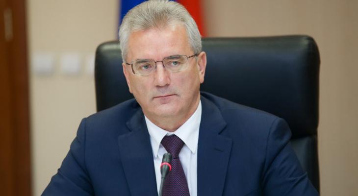 Какие семьи смогут получить продуктовые наборы?: ответил губернатор Пензенской области