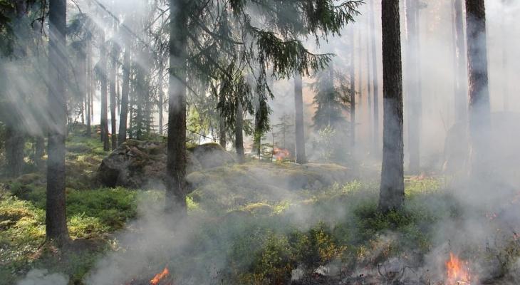 Пензенцы заплатят огромный штраф за нарушение правил пожарной безопасности