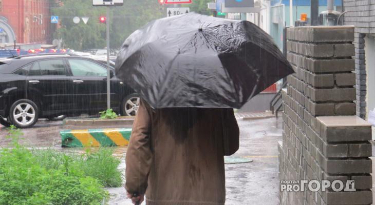 Синоптики рассказали о погоде в Пензе на 31 мая