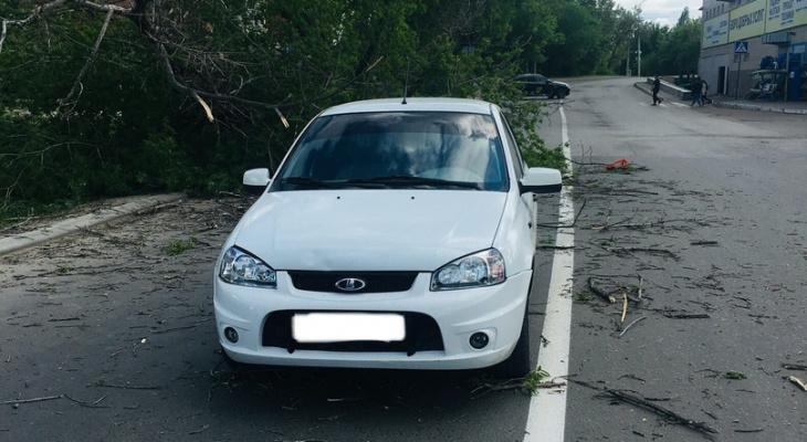 В Пензе упавшее дерево накрыло проезжавший автомобиль