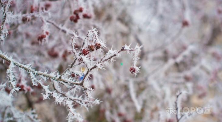 Синоптики предупредили об аномальных морозах в Пензенской области