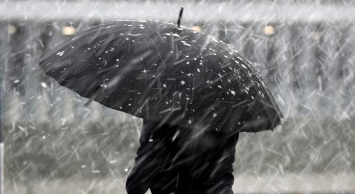 «Плюсовая температура и дождь»: синоптики прогнозируют весеннюю погоду в регионе