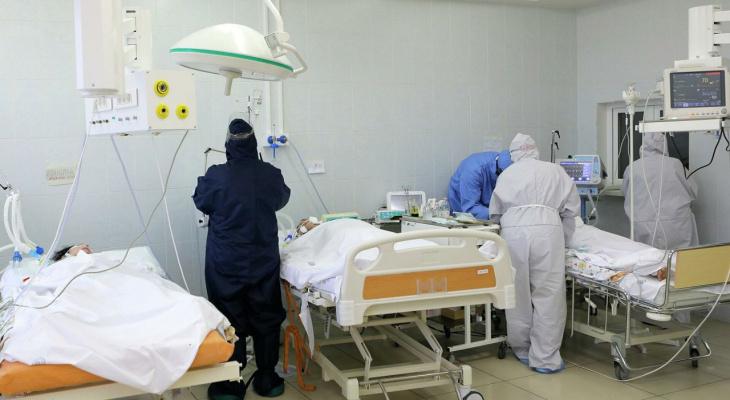 В Пензенской области от опасной инфекции умерли пять человек