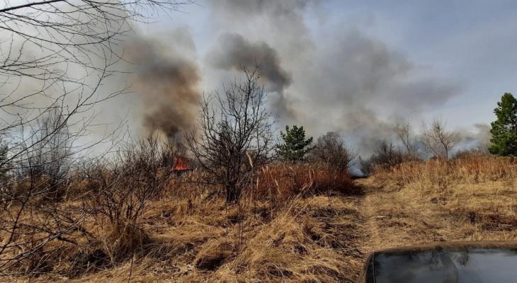 Очевидцы сообщают о крупном пожаре под Пензой