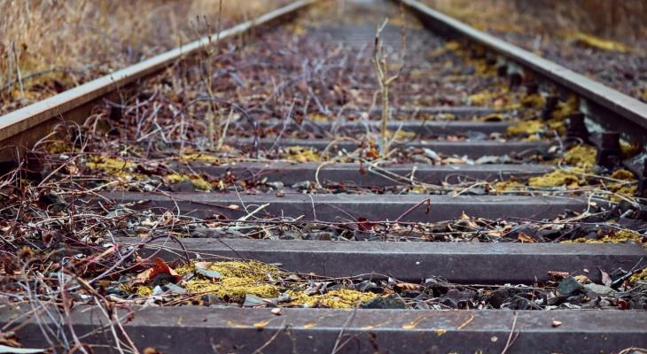 В Пензенской области поезд насмерть сбил мужчину