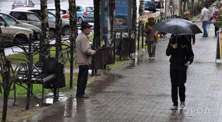 Грозы и ливни: пензенские синоптики озвучили неутешительный прогноз погоды