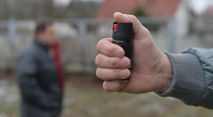 «Услышала крики»: в Пензе на женщину с доберманом напали с газовым баллончиком