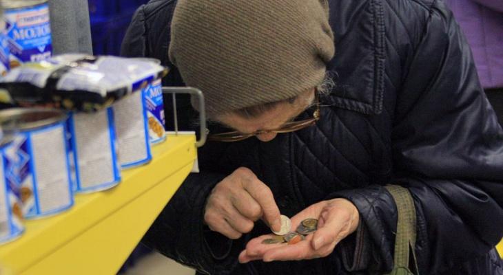 В Пензенской области почти 170 тысяч человек имеют доходы ниже прожиточного минимума