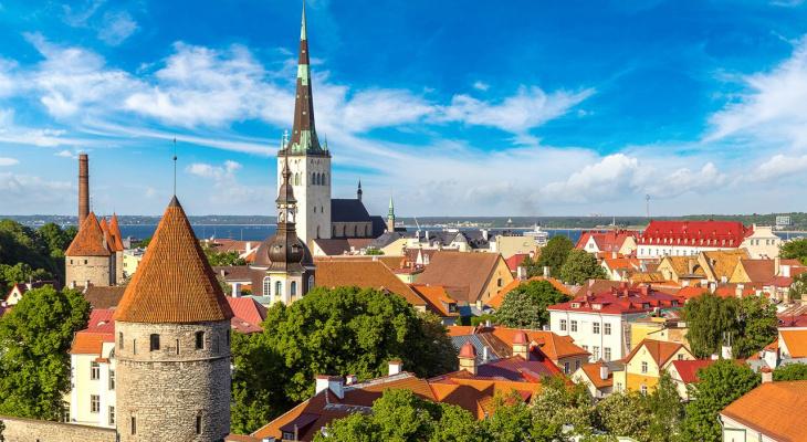 International Business об оформлении визы в Эстонию по приглашению