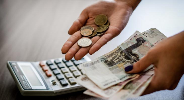 В Пензастате рассказали, почему не раскрывают актуальные сведения о доходах пензенцев
