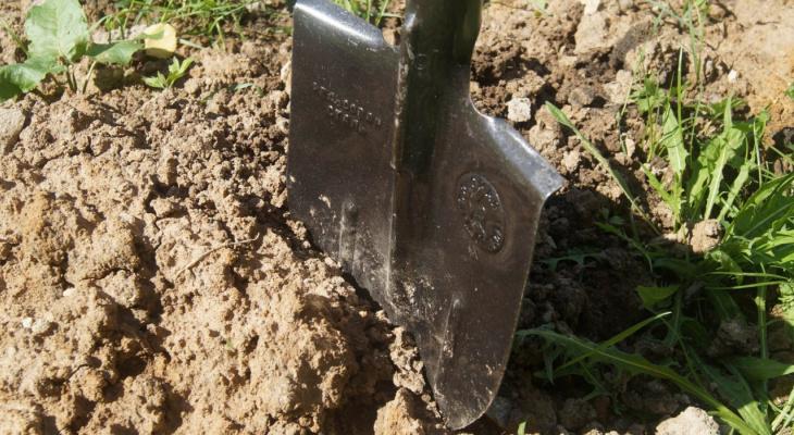 В Пензенской области сын избил мать лопатой и кулаками из-за нехватки денег
