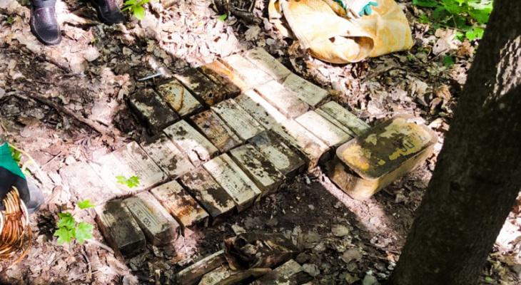 Под Пензой в лесу нашли около 7 тысяч патронов