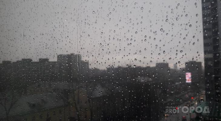 «Дожди и грозы»: синоптики озвучили прогноз погоды в регионе